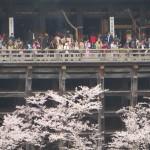 Support Beams under Kiyomizu-dera