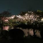 The Toji Gardens at Night