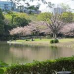 Kitanomaru Park 1
