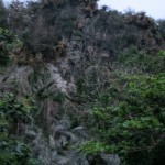 Jungle Cliffs 4